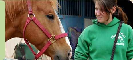 Hippotherapy Image